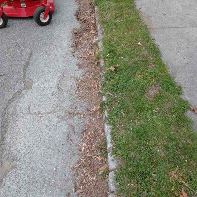 Before Lawn Cut (3)