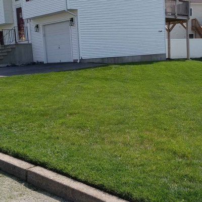 Cut And Trimmed Lawn